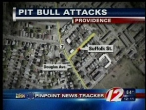 Pitbull Attack Headline